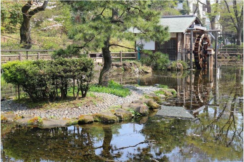 綱島松濤公園